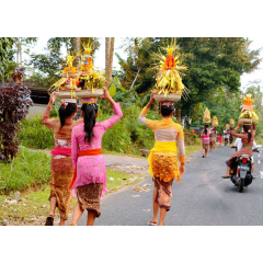 Going to Temple