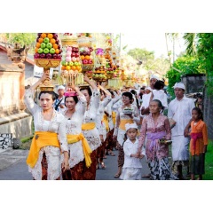 Offerings on Parade