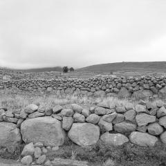 Chaqui Landscape