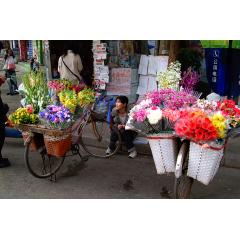 Flower Vendor 2