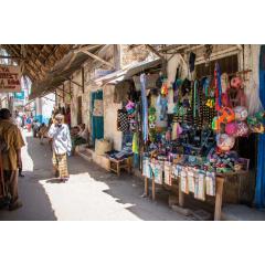 A Shopper's Paradise